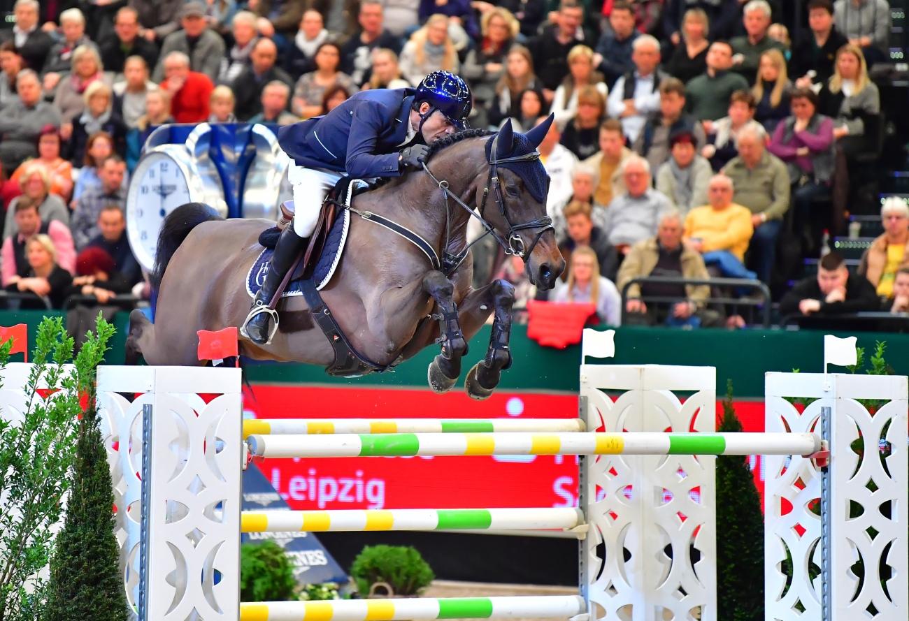Partner Pferd 2018