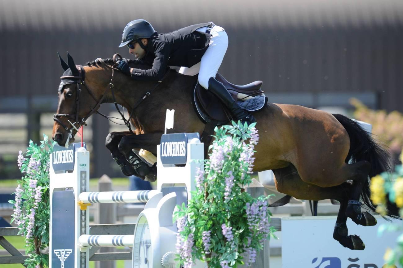 "Résultat de recherche d'images pour ""BEAUMINKA + JUMPING HORSE"""