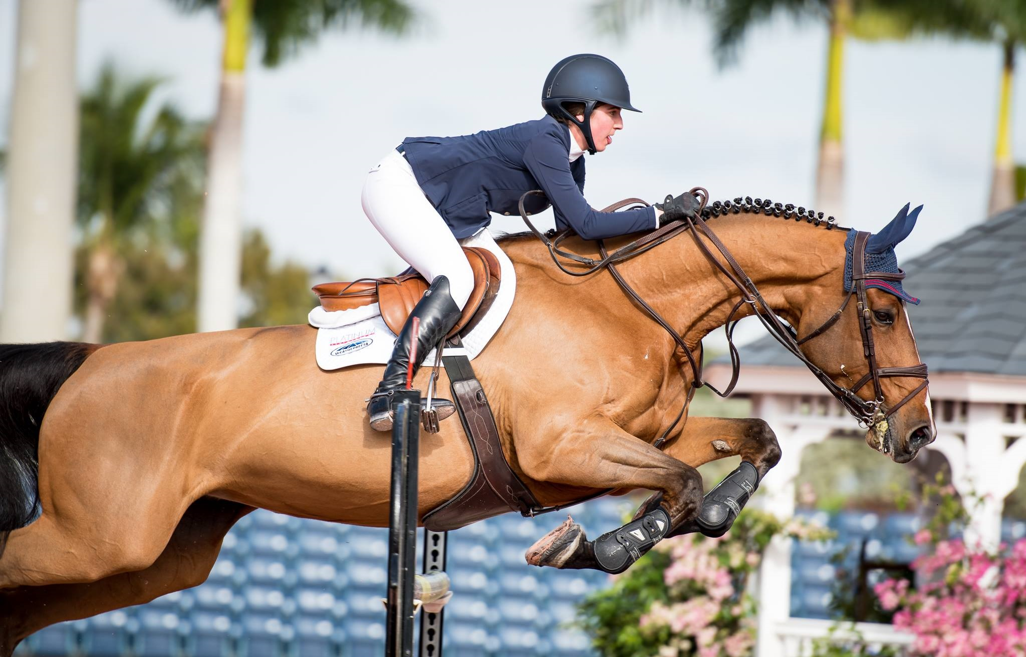 It's On! $100,000 USEF U-25 Show Jumping National