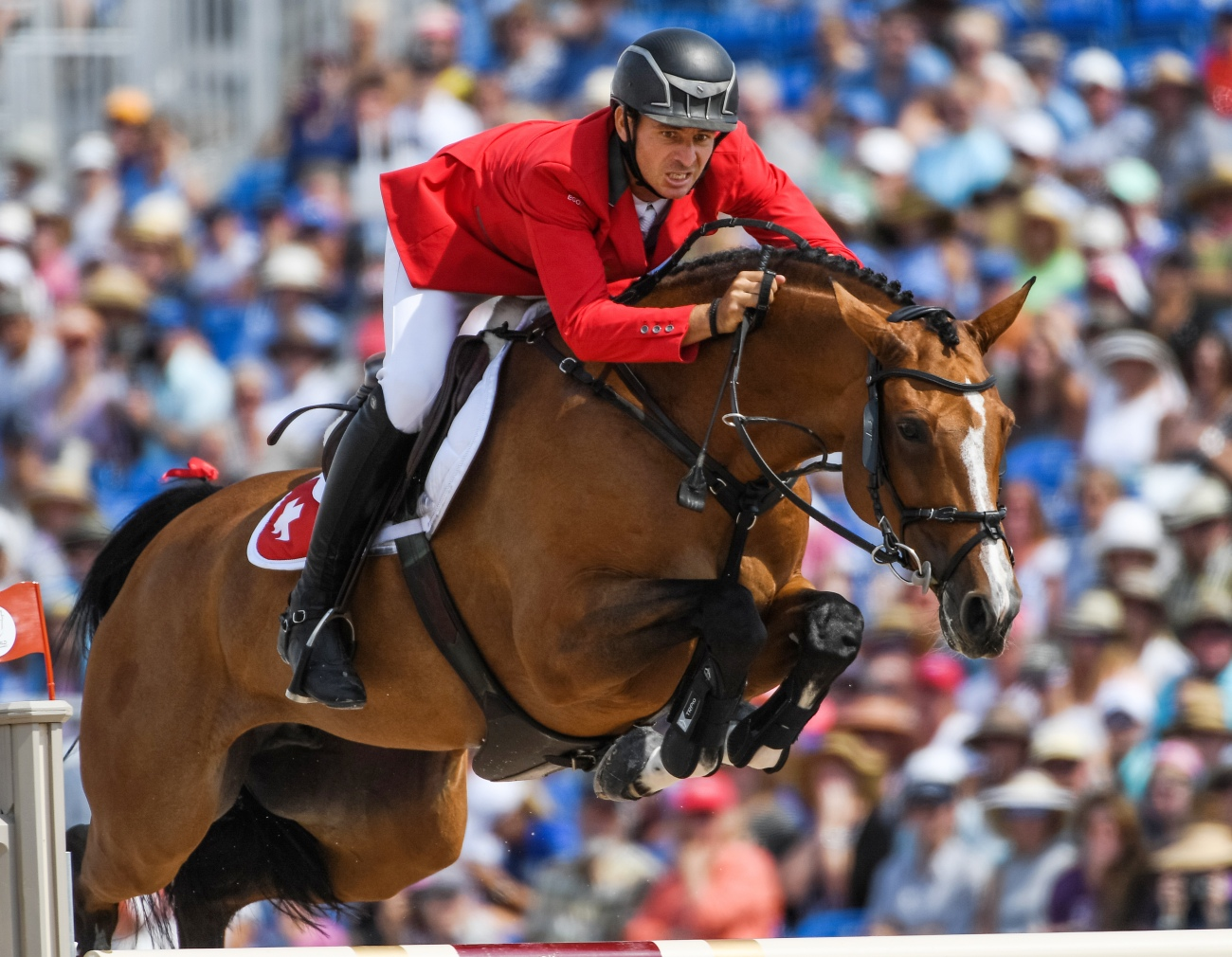 FEI World Equestrian Gamesª Tryon USA