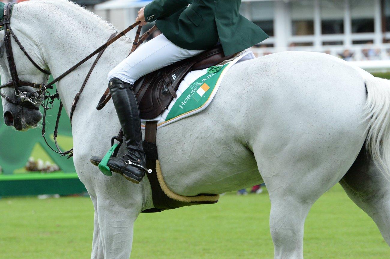 2020.04.21.99.99 News Dublin Horse Show CSIO 5 Cancelled DHS