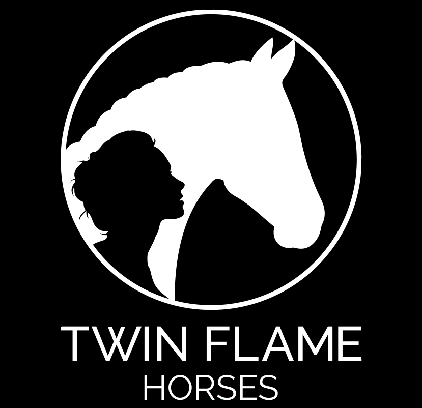 2020.06.23.99.99 News Martin Fuchs & Paris Sellon Launch Twin Flame Horses PMG 2